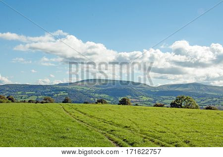 Agricultural landscape looking into the Black mountains and Brecon beacons of the UK.