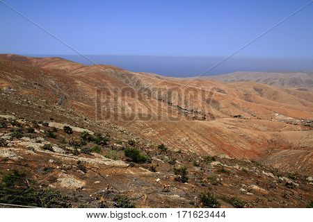 Volcanic Lanscape. Panoramic View On Fuerteventura