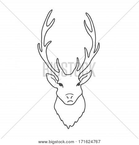 Deer Head isolated on white background. Vector illustration