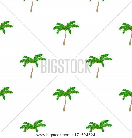Mexican fan palm icon in cartoon style isolated on white background. Mexico country pattern vector illustration.
