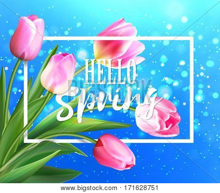 Hello spring tulips flowers background with lettering. Template for greeting card with blooming tulip flowers. Vector illustration EPS10. Pink tulips on blue with bokeh backdrop.