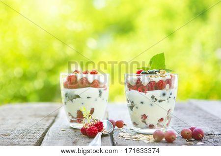 Natural Yogurt With Fresh Raspberries, Black Currant And Muesli.