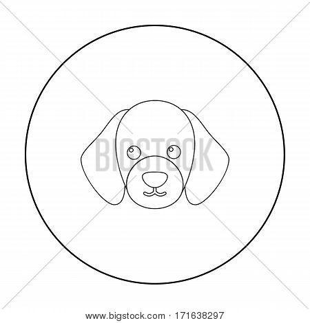 Dog muzzle vector illustration icon in outline design