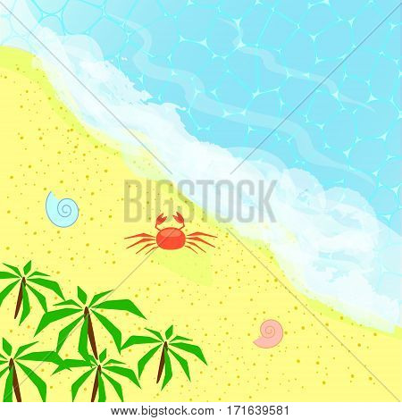 Top view on the beach with ocean palms and crab. Sea holidays concept. Paradise isle for vacation