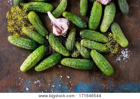 Cucambers For Pickling