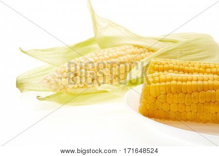 Fresh ear of corn and plate with boiled corncobs on a white background.