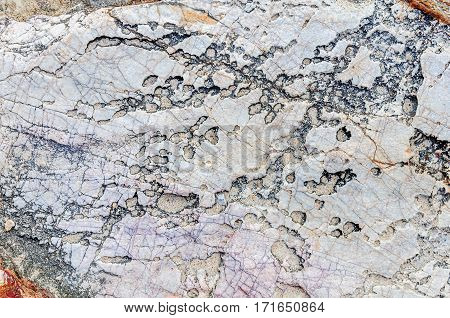 Colorful texture of sea stone texture copy