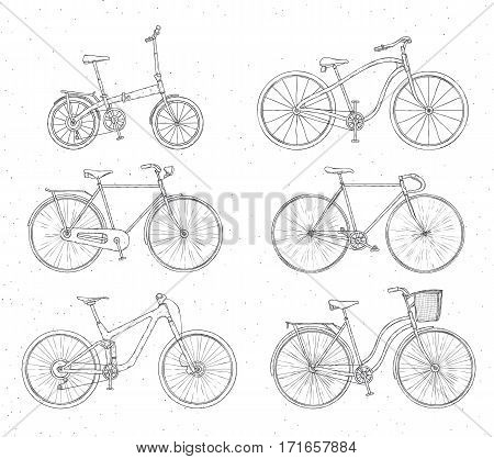 Different types: city fix highway cruiser sport mountain bike Outline illustration