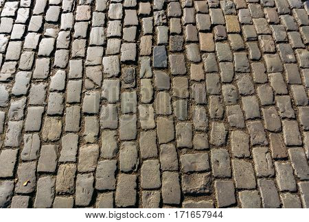 Close-up of asphalt. Paving stones. Streets. Cobblestones