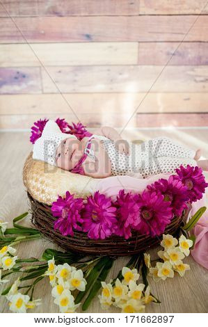 Beautiful little girl is two months in a basket among gerbera flowers and daffodils on a wooden background