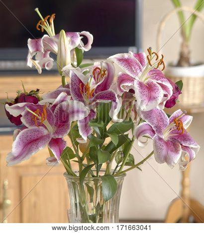 Lilies in full bloom in a vase.