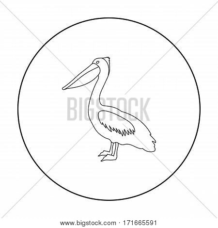Pelican icon in outline style isolated on white background. Bird symbol vector illustration.