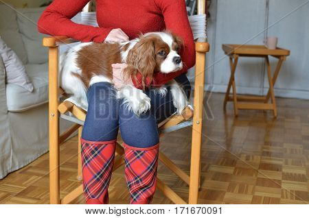 Woman in red boots with red tartan pattern holding her lovely pet Cavalier King Charles Spaniel