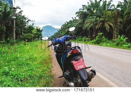 Honda Motobike At Road Though The Rainforest