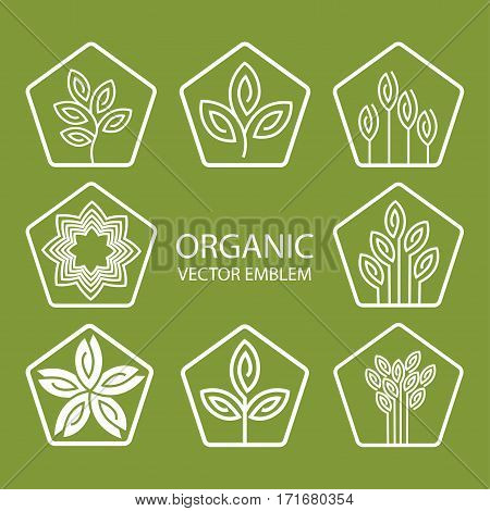 Vector set abstract emblem, outline monogram, flower symbol, concept for organic shop or yoga studio, logo design template, linear logo design template, organic food and farming, green, vegan food concept