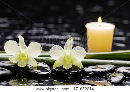 Spa concept – white orchid with candel