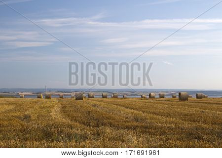 Harvest at Hadleigh, near Leigh-on-Ses, Essex, England