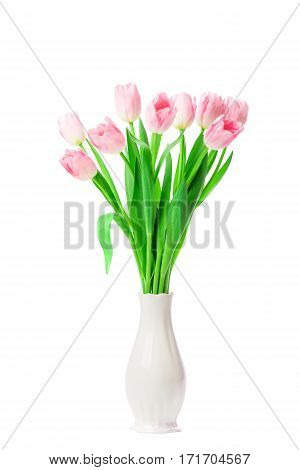 Beautiful Pink tulips flowers in vase isolated on white background. 8 march Mother's Day concept. Small DOF.