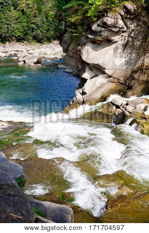 river flowing over rocks in summer forest