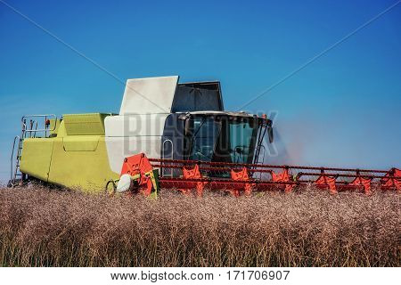 Combine Harvester on a Wheat Field. Agriculture.