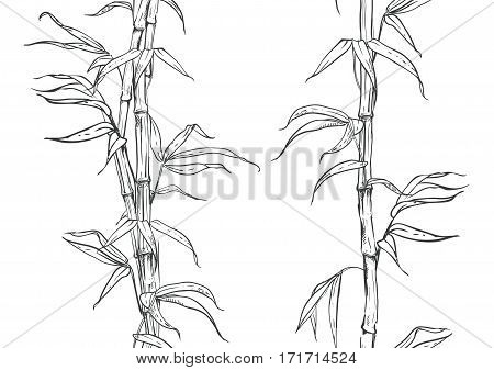 hand drawn illustration with seamless pattern bamboo stalk and leaves. vector eps 8
