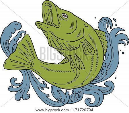 Drawing sketch style illustration of a rockfish swooping up in turbulent waters set on isolated background viewed from the side.