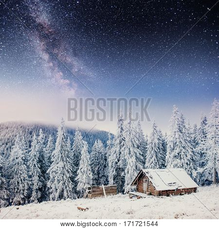 Dairy Star Trek in the winter woods. Cabin in the mountains. Dramatic and picturesque scene. Carpathian, Ukraine, Europe