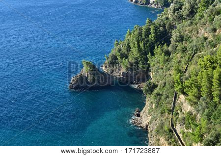 Lush trees along the Amalfi Coast along the Salerno Gulf in Italy.