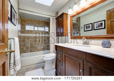 Traditional Bathroom In Brown Tones With Skylight