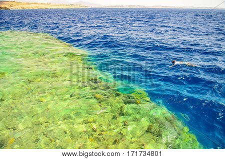 Egypt, Sharm El Sheikh - 08 June / 2015: Visitors At Snorkelling In The Sea During The Surf.