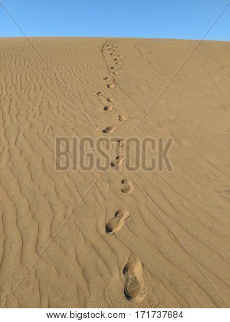 Trace of footprints on the brownish sand