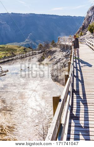 Yellowstone National Park, USA - May 17, 2016: Man on boardwalk taking pictures of steam in Mammoth Hot Springs in Wyoming