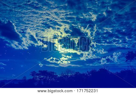 Attractive Of Amazing Blue Dark Night Sky With Stars And Cloudy Above Field Of Trees.