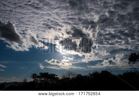 Attractive Of Amazing Sky With Cloudy And Silhouette Of Tree. Outdoors On Summer Day.