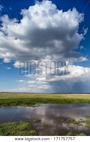 A lake beneath a beautiful African sky, used as a watering hole for wildlife, with rain in the distance