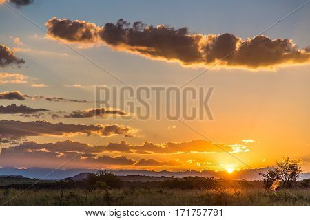 Sunrise over the bushveld at a game reserve