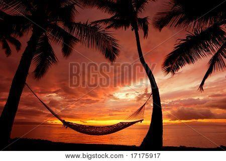 Beautiful Vacation Sunset, Hammock Silhouette with Palm Trees, Maui, Hawaii