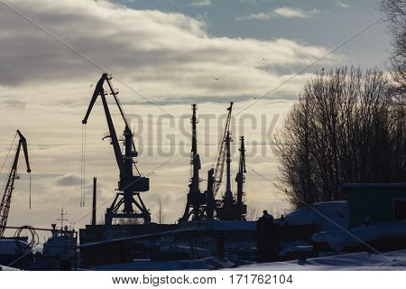Seaport cranes at sunny winter day, Silhouettes, telephoto