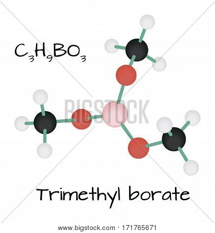 molecule C3H9BO3 Trimethyl borate isolated on white