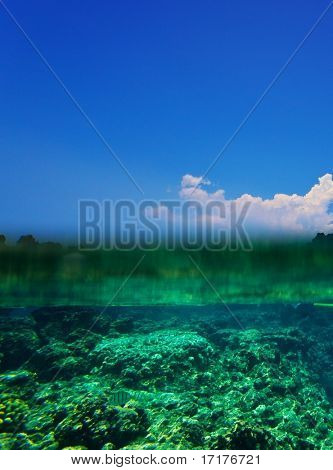 Tropical Coral Reef and Blue Sky Over Under