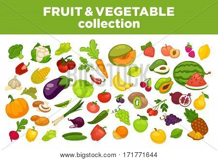 Fruits, vegetables and berries icons pumpkin, broccoli and apple or pear. Isolated flat onion, radish or beet and garlic. Vector set of cauliflower, eggplant zucchini, cherry or strawberry and grape