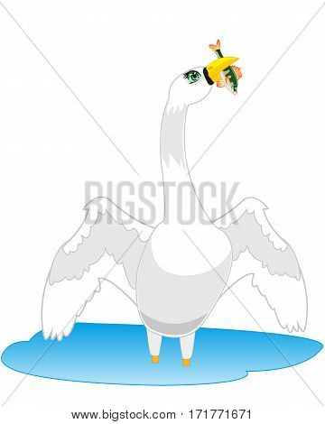 The Bird swan in water goes fishing.Vector illustration