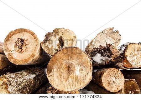 Felled trunks of trees stacked isolated on white background. Stacks of sawn woods.  Industrial logging of pine trees. Nature is used by people.