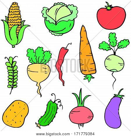 Doodle of vegetable stock collection vector art
