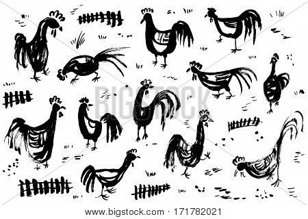 Ink artistic drawing with roosters. Set with cocks and fence in rural scene. Vector illustration in doodle incomplete style with domestic chicken birds in black and white