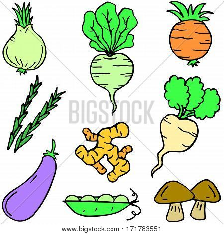 Illustration vector of vegetable set collection stock