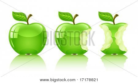 green nibbled apple with leaf - vector illustration, isolated on white background