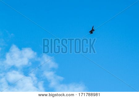 Distant View Of A War Plane Flying In Blue Sky
