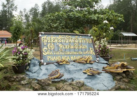 turtle farm breeding pool to maintain the treatment of the population of Thailand