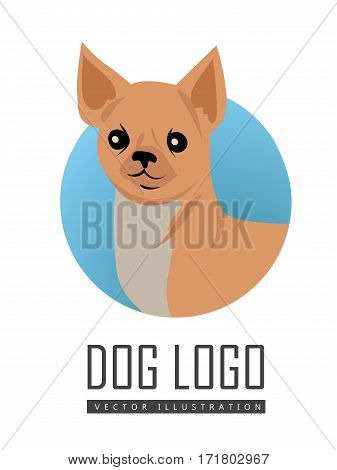 Dog vector logo in flat style. Chihuahua bust in the blue circle illustration for pet shop, breed club logotype, app icon, animal infogpaphics elements, web design. Isolated on white background